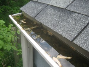 gutter cleaning bucks county, montgomery county pennsylvania